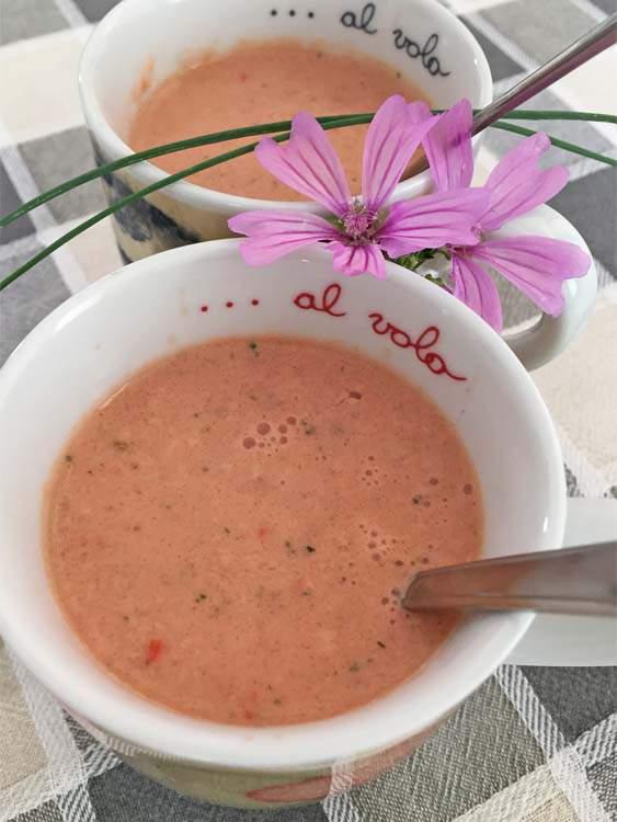 Gazpacho con kefir di latte di capra